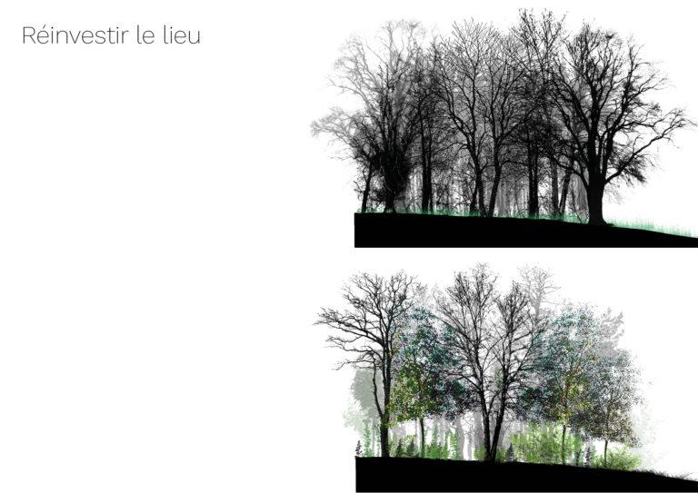 TFE 13_Bénédicte Mitaine Paysagiste concepteur