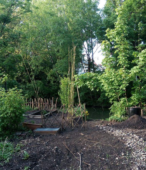 Jardin privé MV 2_Bénédicte Mitaine Paysagiste concepteur