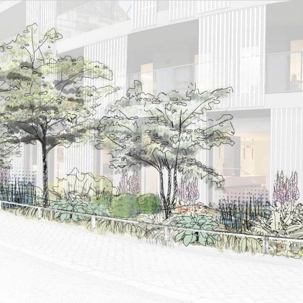 Jardin sur rue_Bénédicte Mitaine Paysagiste concepteur
