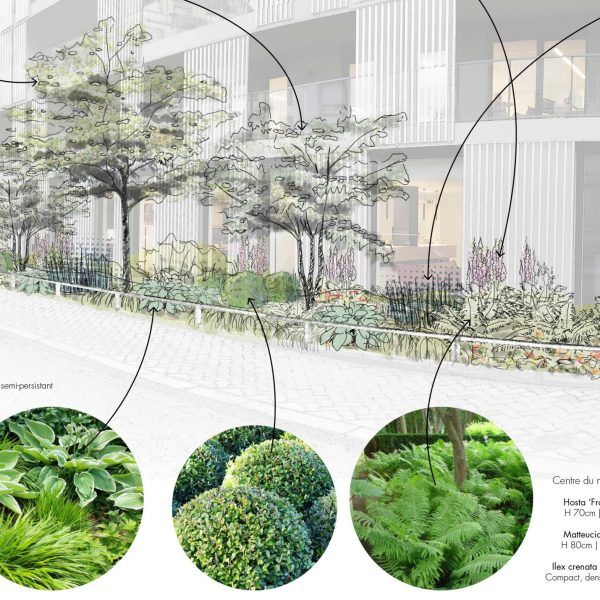 Jardin sur rue palette_Bénédicte Mitaine Paysagiste concepteur